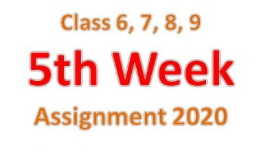 5th assignment for class 6,7,8,9