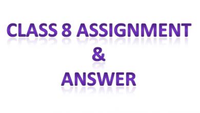 class eight assignment ans