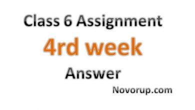 class six assignment answer