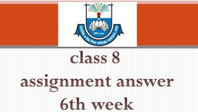 class 8 assignment answer 6th week