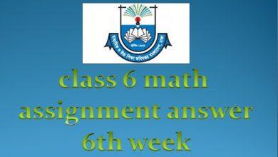 class six math assignment answer