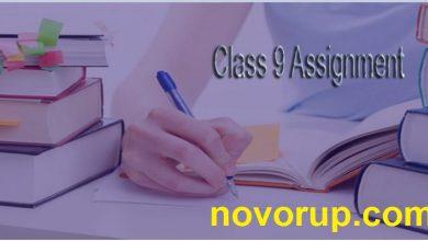 class 9 assignment solution.1