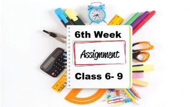 6th week assignment